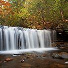 Oneida Falls (Autumn) by Tim Devine