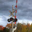 Train Crossing by Michael Kelly