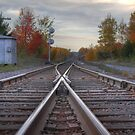 Dixie Tracks by Michael Kelly