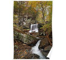 B. Reynolds Falls II (Autumn) Poster