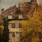 Remains - Heidelberg, Germany by Jean-Pierre Ducondi