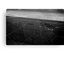 Beauty in the Misfit Canvas Print