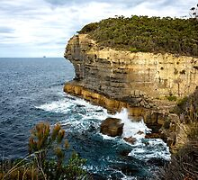 Sea Cliff, Eaglehawk Neck, Tasmania by Chris Cobern