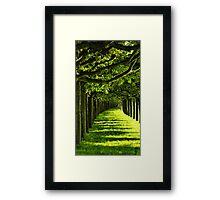 Green Allee Framed Print
