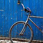 Bicycle by Valentina Silva