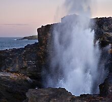 Kiama Blowhole by Karine Radcliffe