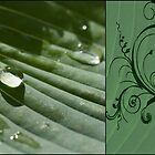 green in green by Anne Seltmann
