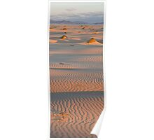 Dunes at sunset Poster