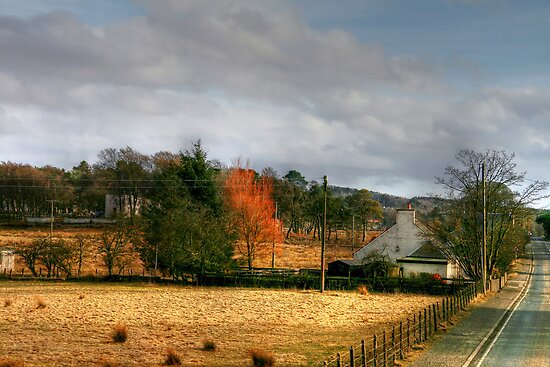 Late Afternoon Light near Ledburn, Scotland by Christine Smith