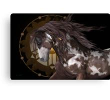 Apache .. The Stallion Canvas Print