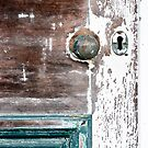 Old door by yurix