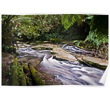 Down stream of Erskine Falls Poster