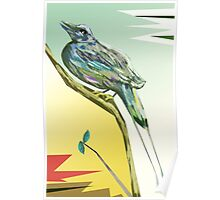Long tailed blue bird 3 Poster