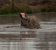 Scooping mud by Rob Schoon