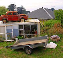 Kiwi Garage? by Stecar