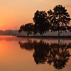 at peace by dc witmer