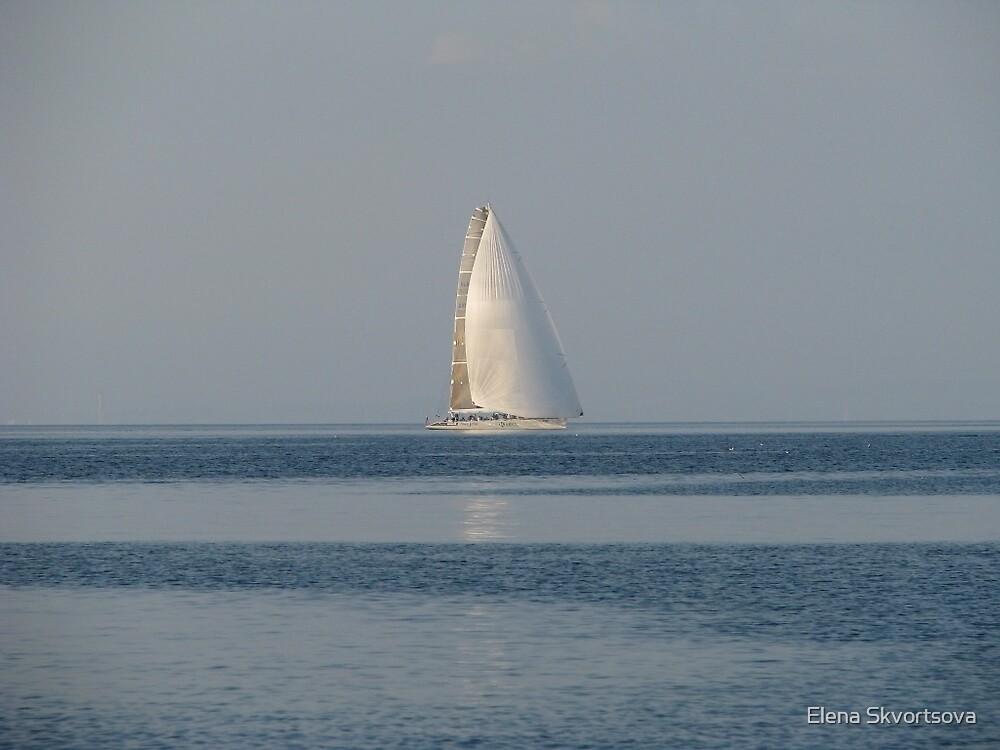 Lonely sail by Elena Skvortsova