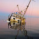 """""""Sunken Dreams"""" Shark Bay, Western Australia by wildimagenation"""
