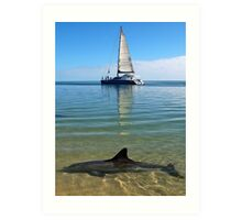 """Monkey Mia Magic"" Shark Bay, Western Australia Art Print"