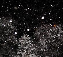 Let it snow by vickimec