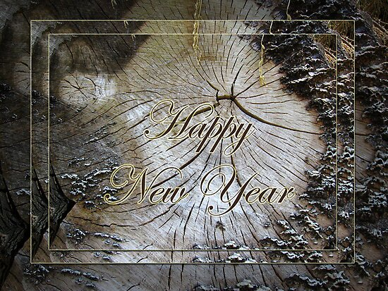 Tree trunk - Happy New Year! by steppeland