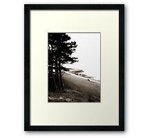 Promenade Framed Print