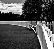 The Oval Fence by BK Photography