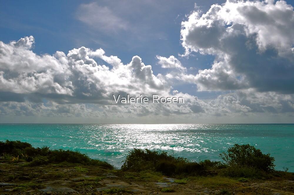 Nubes y Mar by Valerie Rosen