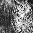 Great Horned Owl by Susana Weber