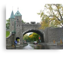 Looking through the underpass near the Citadelle Metal Print