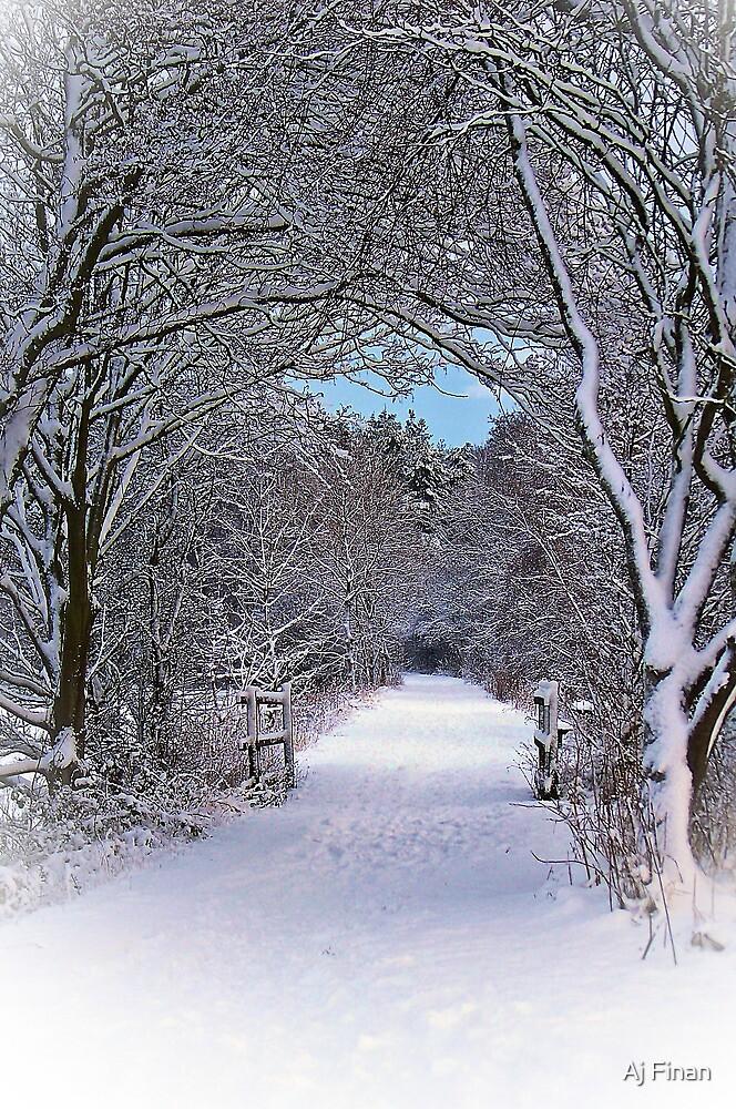 A Winter's Walk In Snowy Scotland. by Aj Finan
