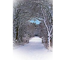 A Winter's Walk In Snowy Scotland. Photographic Print