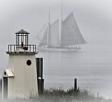 Misty Adventure by Bryan Peterson