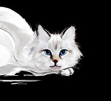 White and black cats by Teni