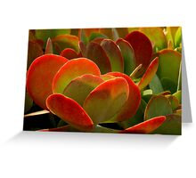 The World Is A Colorful Wonder ~ Part Nine Greeting Card