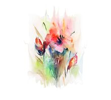 Floral watercolor illustration  by Teni