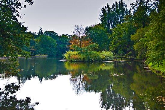 The Beauty of Stillness - Autumn by Trevor Kersley