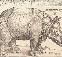 Albrecht Dürer or Durer The Rhinoceros by wetdryvac