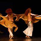 Arabian Dancer by Linda Gregory
