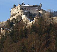 Burg Hohenwerfen by Lee d'Entremont