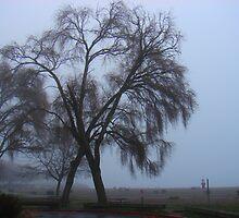 Autumn Fog by Honario