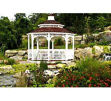 Tranquil Garden Photographic Print