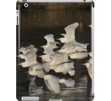 To Roost They Go iPad Case/Skin