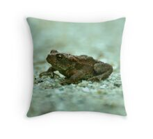 MR Toad Throw Pillow