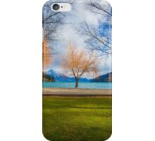 Winter by Queenstown Lake iPhone Case/Skin