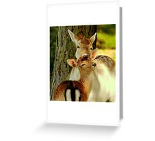 Just stand still Greeting Card
