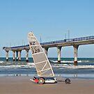 New Brighton Pier, NZ by John Brotheridge