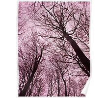 Branches Pink Poster