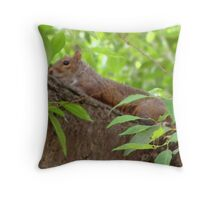 Siesta Time Throw Pillow