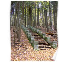 Woodland Stairs Poster